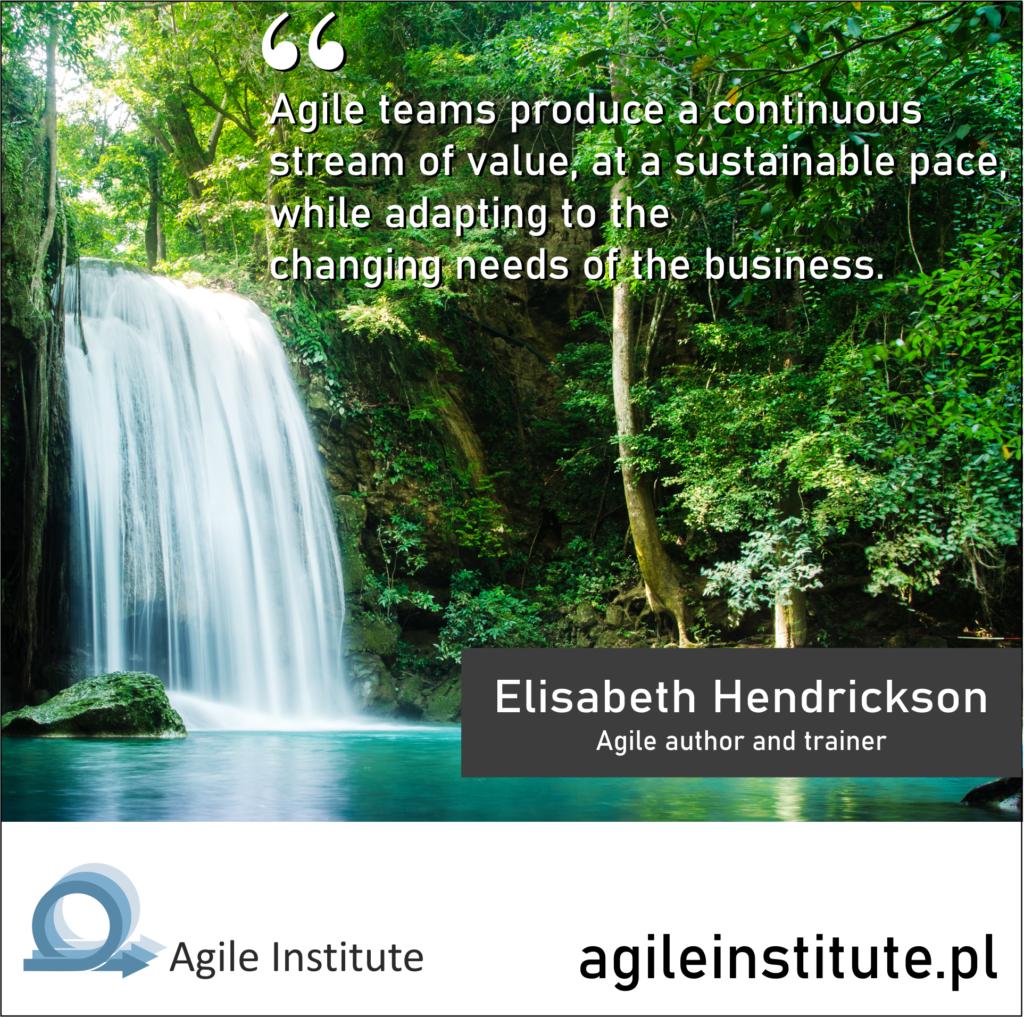 Quote from Elisabeth Hendrickson